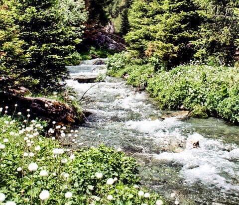 Agron Kuçi  Kryeministër  ndalini punimet përgjatë lumit  Ereniku i vogël