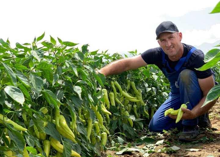 Ekrem Duraku nga Krusha e Madhe  njëri ndër fermerët më të mirë